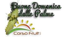 logo corso fruit