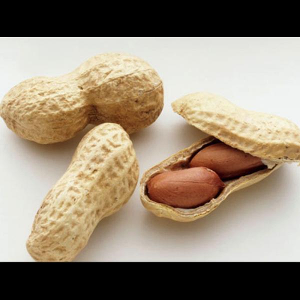 """Secchiello arachidi EG. """"artigianali"""""""